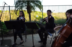 Classical Trio San Diego Outdoor Wedding