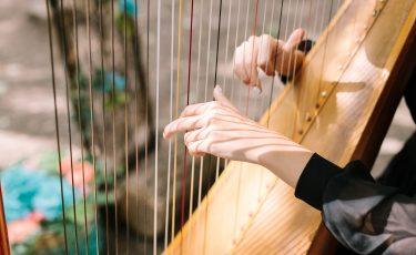 Jackie, Harpist