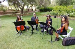 String Quartet Wedding Southern California