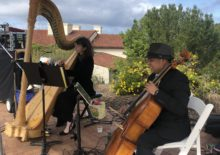 Cello and Harp Wedding Duo