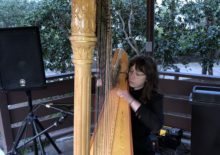 Classical Harpist Background Music