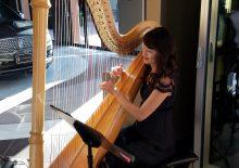 Classical & Contemporary Harp Player OC