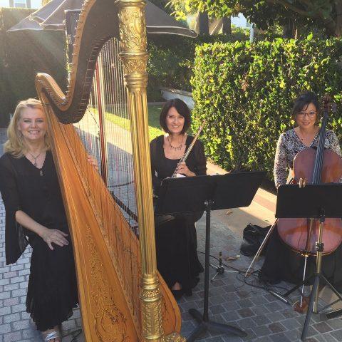 Classical Wedding Musicians for Weddings Orange County