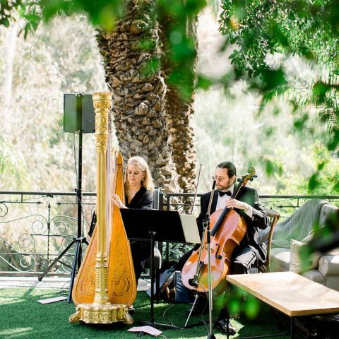 Harp Player for Wedding Ceremony Duet with Cello