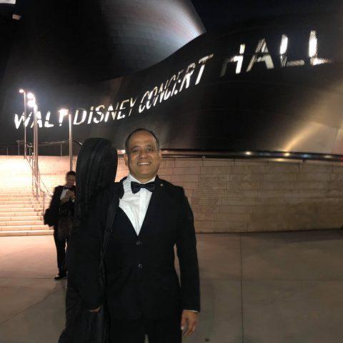 Walt Disney Hall Concert Art Ocdamia